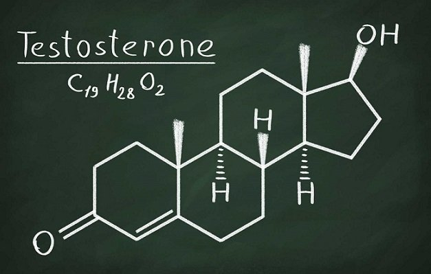 4 natural testosterone booster foods| how to increases testosterone