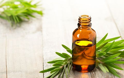 tea tree oil remove scars naturally from face permanently