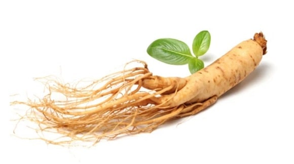 Ginseng natural supplements for muscle building