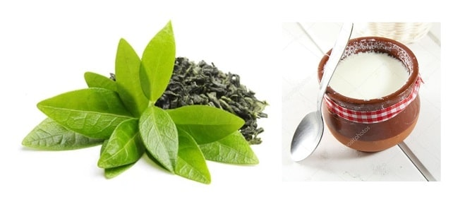 Green tea and curd dark circles on eye with natural remedies